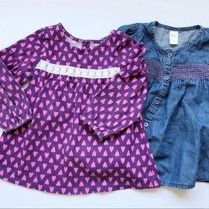 Toddler Girls Shirt Tunic Bundle